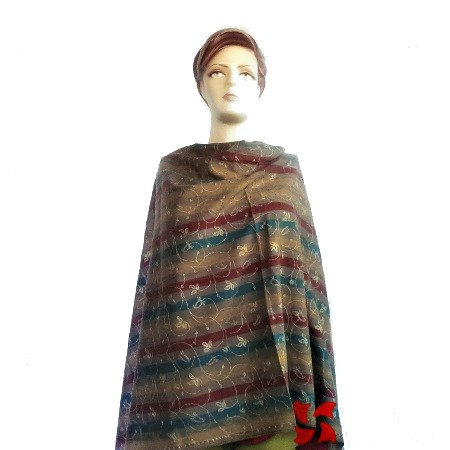 Semi Pashmina Shawl, Multi Color Jall